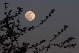 pleine lune atelierducrayon