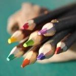 crayons branchés atelier du crayon couleurs d'automne