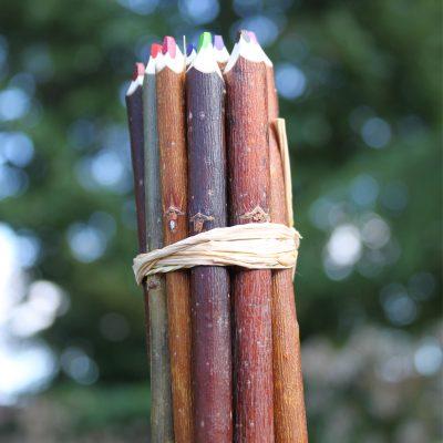 fagots 16 couleurs en branche de 12 cm