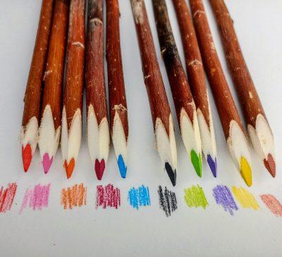 crayons de couleur artisanaux en branche d'arbre